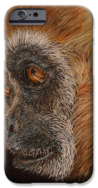 Drawings iPhone Cases - Gibbon iPhone Case by Karen Ilari