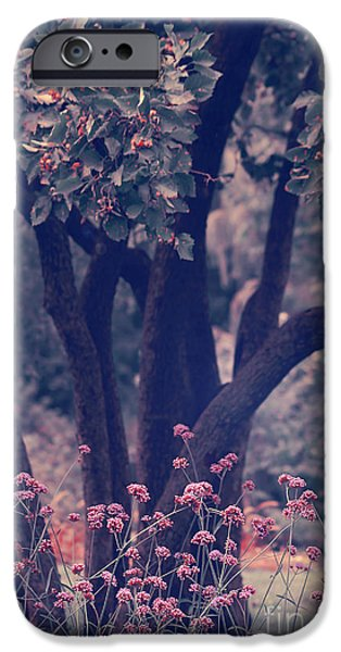 Aimelle Photographs iPhone Cases - Give Life a Chance - v02b iPhone Case by Aimelle