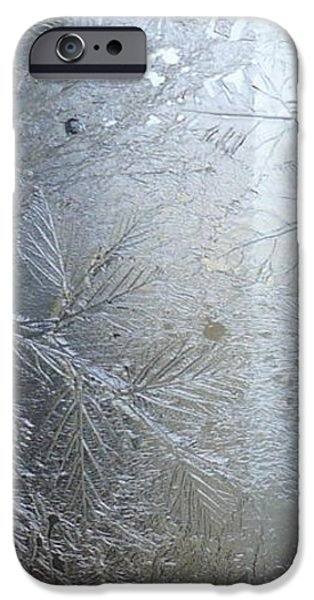 Plant Glass iPhone Cases - Glass Wall - The Fossil Wall  iPhone Case by Rick Silas