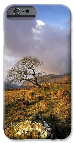 Park Scene iPhone Cases - Glenveagh National Park, County iPhone Case by Peter McCabe