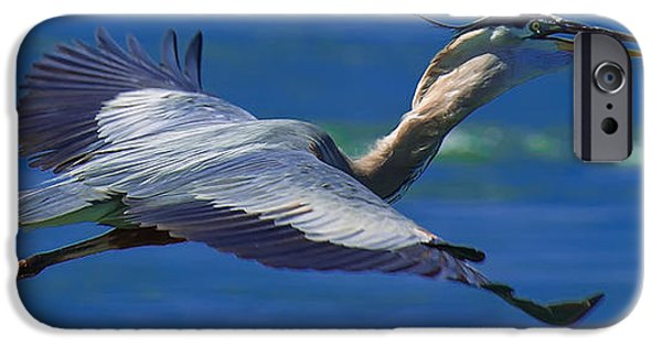 Fish Photographs iPhone Cases - Gliding Great Blue Heron iPhone Case by Sebastian Musial