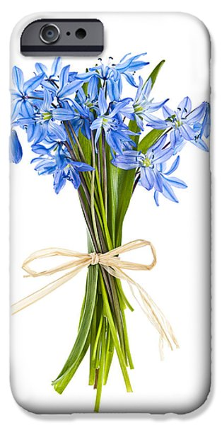 Botanical Photographs iPhone Cases - Blue wildflower bouquet iPhone Case by Elena Elisseeva