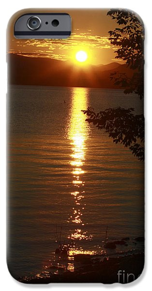 Charlotte iPhone Cases - Golden Evening Sun Rays iPhone Case by Deborah Benoit