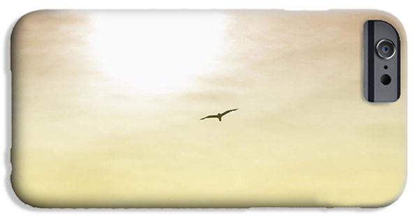 Flying Seagull Digital Art iPhone Cases - Golden Flyer iPhone Case by Bill Cannon