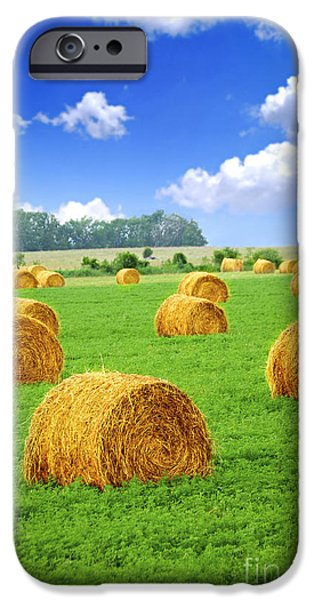 Crops iPhone Cases - Golden hay bales in green field iPhone Case by Elena Elisseeva