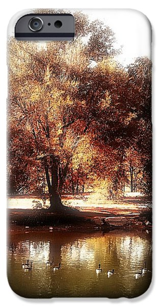 Golden Meadow iPhone Case by Michelle Frizzell-Thompson