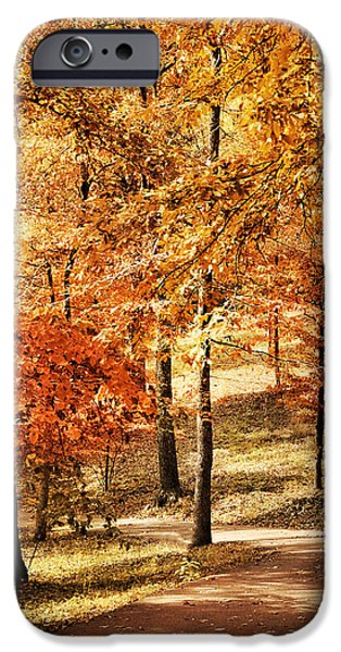 Golden Path iPhone Case by Jai Johnson