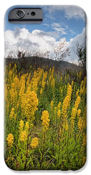 Autumn iPhone Cases - Goldenrod on the Parkway iPhone Case by Rob Travis