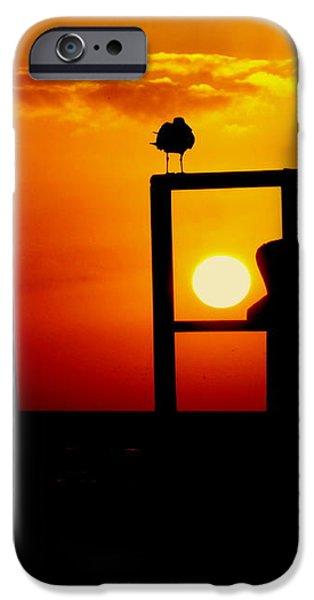 GOODNIGHT GULLS iPhone Case by KAREN WILES