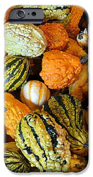 Gourdgeous iPhone Case by Kevin Fortier
