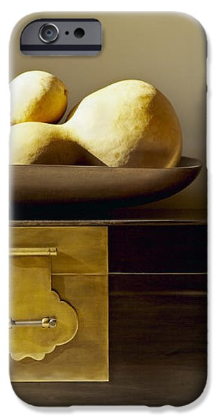 Gourds Still Life I iPhone Case by Kyle Rothenborg - Printscapes
