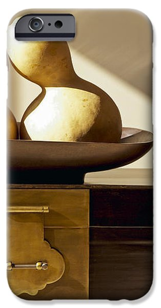Gourds Still Life II iPhone Case by Kyle Rothenborg - Printscapes