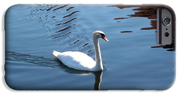 Swans... Photographs iPhone Cases - Grace Of GOD iPhone Case by Julian Bralley