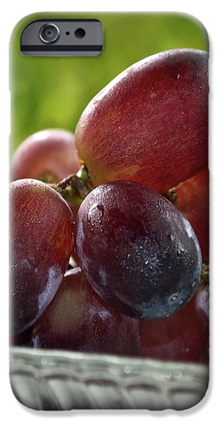 Grapes iPhone Case by Gwyn Newcombe