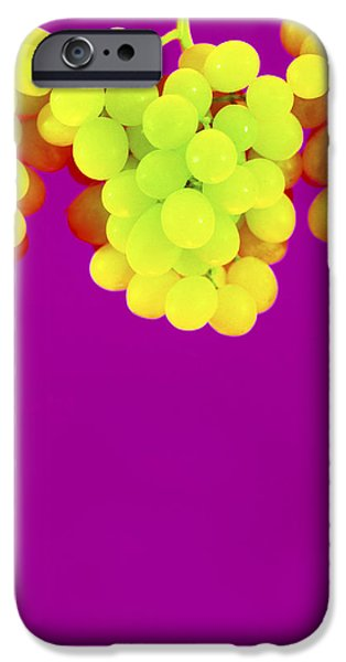 Grapes iPhone Case by Johnny Greig