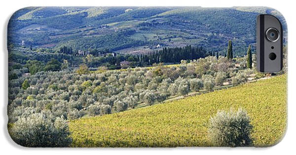 Chianti Landscape iPhone Cases - Grapevines and Olive Trees iPhone Case by Jeremy Woodhouse