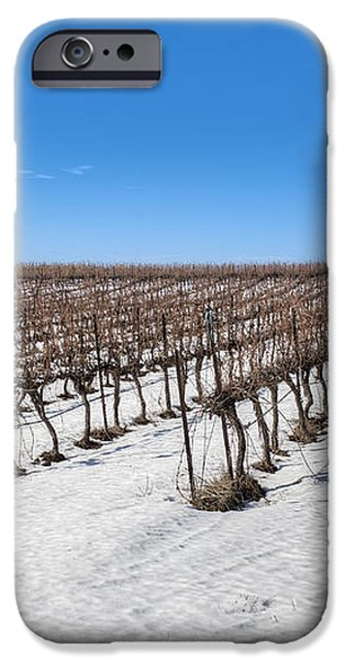 Grapevines In Snow iPhone Case by Noam Armonn