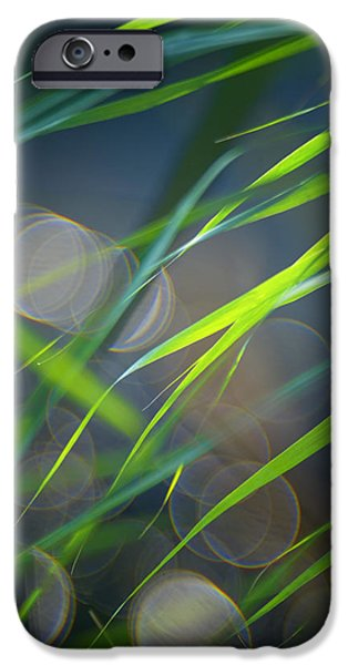 Decorativ iPhone Cases - Grass and Evening Light iPhone Case by Silke Magino