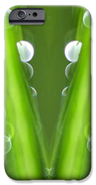 Grass iPhone Case by Silke Magino