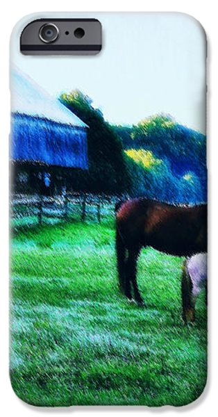 Grazing in the Meadow iPhone Case by Bill Cannon