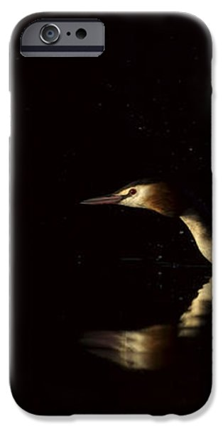 Great Crested Grebe in a hurry iPhone Case by Andy Astbury