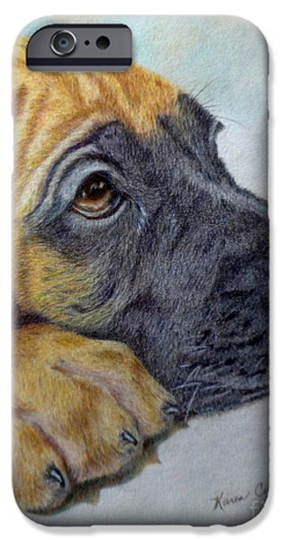 Dog Close-up Paintings iPhone Cases - Great Dane Puppy iPhone Case by Karen Curley