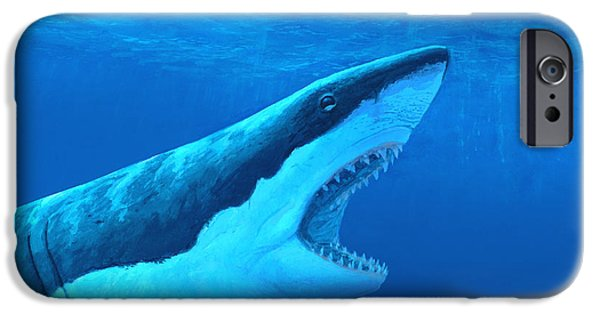 Marine iPhone Cases - Great White Shark iPhone Case by Chris Butler