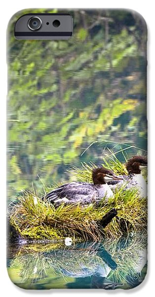 Grebe Podicipedidae Birds Sitting On A iPhone Case by Richard Wear