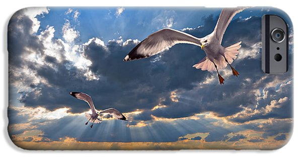 Headland iPhone Cases - Greek Gulls With Sunbeams iPhone Case by Meirion Matthias