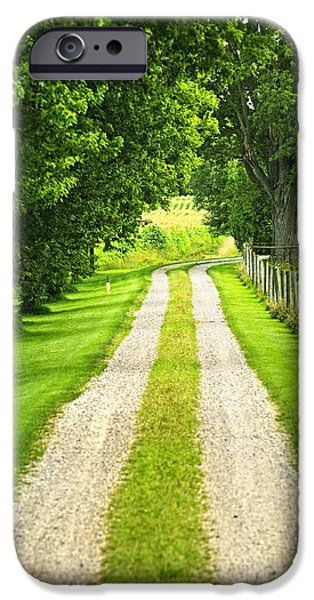 Paths iPhone Cases - Green farm road iPhone Case by Elena Elisseeva