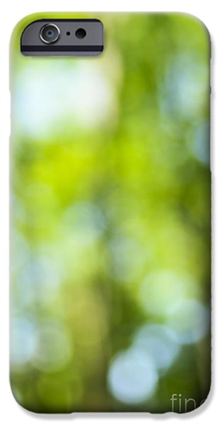 Nature Abstracts iPhone Cases - Green forest and blue sky iPhone Case by Elena Elisseeva