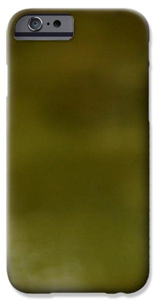 Green Morning iPhone Case by LeeAnn McLaneGoetz McLaneGoetzStudioLLCcom