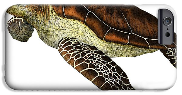 Reptiles Drawings iPhone Cases - Green Sea Turtle iPhone Case by Roger Hall and Photo Researchers
