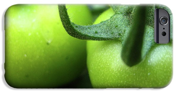Wildlife Photographer iPhone Cases - Green Tomatoes No.3 iPhone Case by Kamil Swiatek