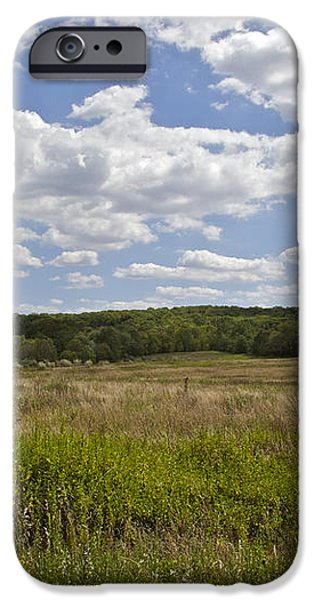 Griggstown Native Grassland Preserve iPhone Case by David Letts