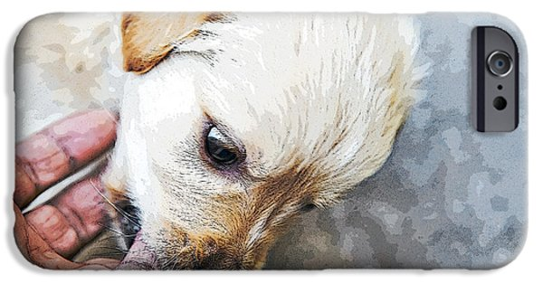 Dog In Landscape iPhone Cases - Grr Angry Eyes on Retriever iPhone Case by Kantilal Patel