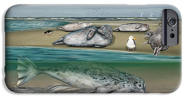 North Sea Drawings iPhone Cases - Habitat common seals  - Pinnipeds - Marine Mammals - mudflat tideland - Phoque commun-Banc de Sable  iPhone Case by Urft Valley Art