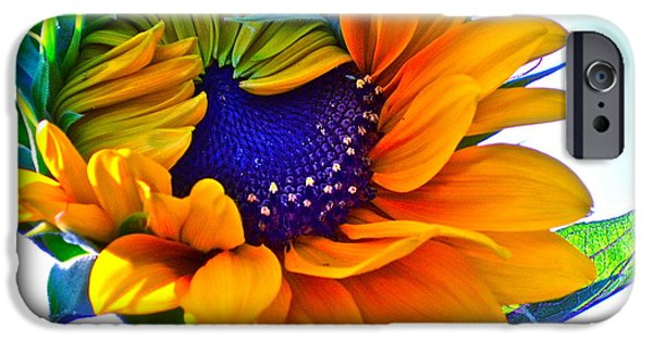 Sunflower Photograph iPhone Cases - Half-Awake iPhone Case by Gwyn Newcombe