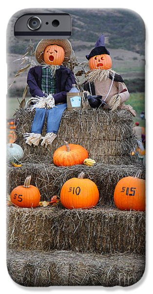 Halloween Pumpkin Patch 7D8476 iPhone Case by Wingsdomain Art and Photography