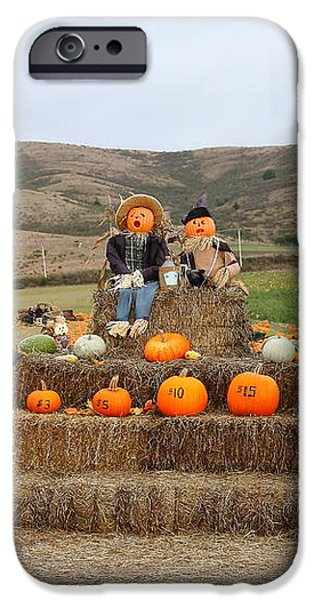 Halloween Pumpkin Patch 7D8478 iPhone Case by Wingsdomain Art and Photography