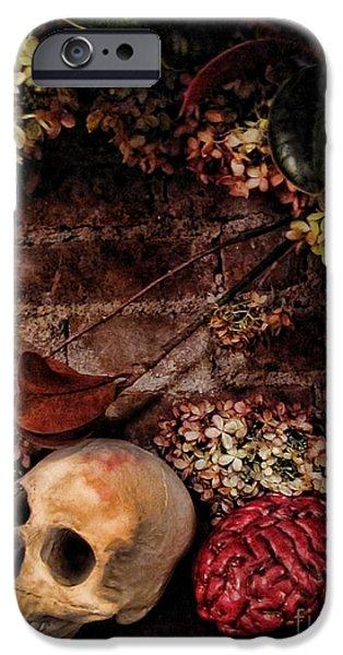 Halloween Still Life iPhone Case by Joan  Minchak