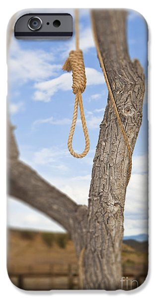 Hangman iPhone Cases - Hangman Noose in a Tree iPhone Case by Bryan Mullennix