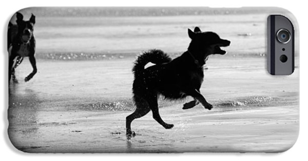 Black Dog iPhone Cases - Happy Dog black and white iPhone Case by Jill Reger