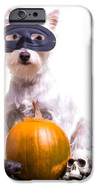 Cute Puppy Photographs iPhone Cases - Happy Halloween Dog iPhone Case by Edward Fielding