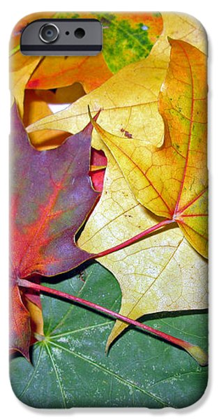 Happy We Are Together iPhone Case by Ausra Paulauskaite