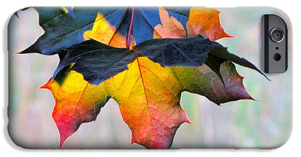 Harbinger Of Autumn iPhone Case by Sean Griffin