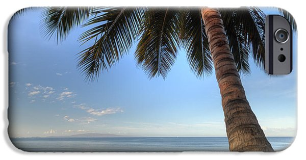 Morning iPhone Cases - Hawaiian Coconut Palm Sunrise 2 iPhone Case by Dustin K Ryan