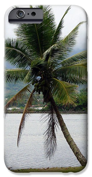 Pen And Ink Photographs iPhone Cases - Hawaiian Palm iPhone Case by Athena Mckinzie