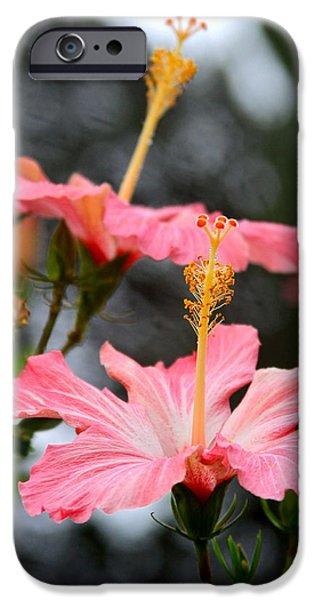 Innocence iPhone Cases - Hawaiian Pink Hibiscus iPhone Case by Karon Melillo DeVega