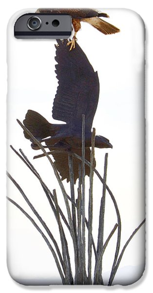 Hawk on statue iPhone Case by Rebecca Margraf